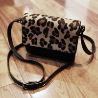 New in my Wardrobe: Zara Leopard Print Bag